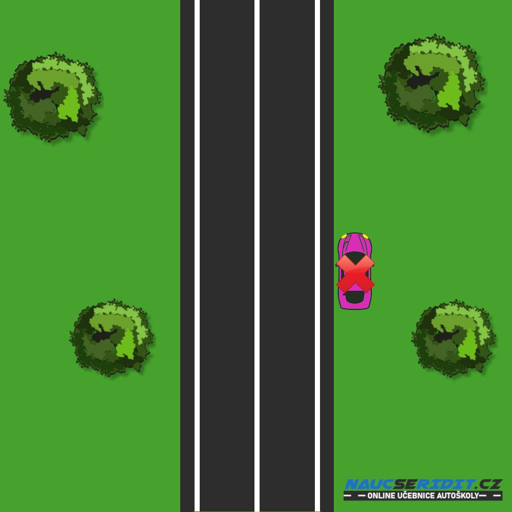 Zákaz zastavení na silniční vegetaci